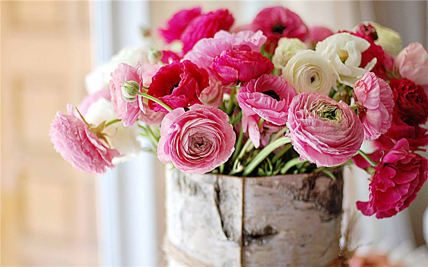 15 Flowers In Season In February For Wedding Everafterguide