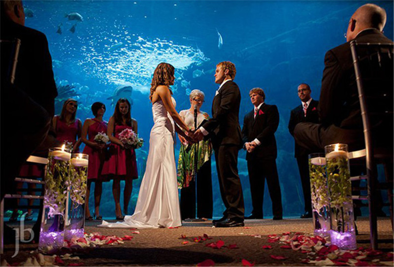15 best places to get married in tampa fl everafterguide for Beautiful places for a wedding