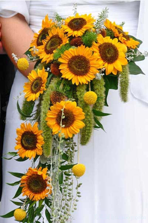 Bridesmaid Bouquets Sunflowers : Warmth and happiness perfect sunflower wedding bouquet